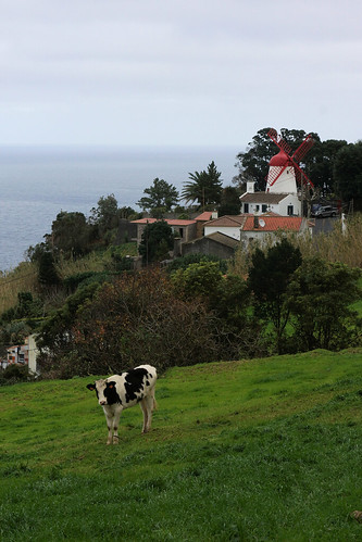 Azores Agriculture