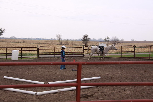 Horse Lessons (9)