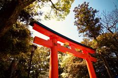 Red Torii Of Fushimi Inari-taisha