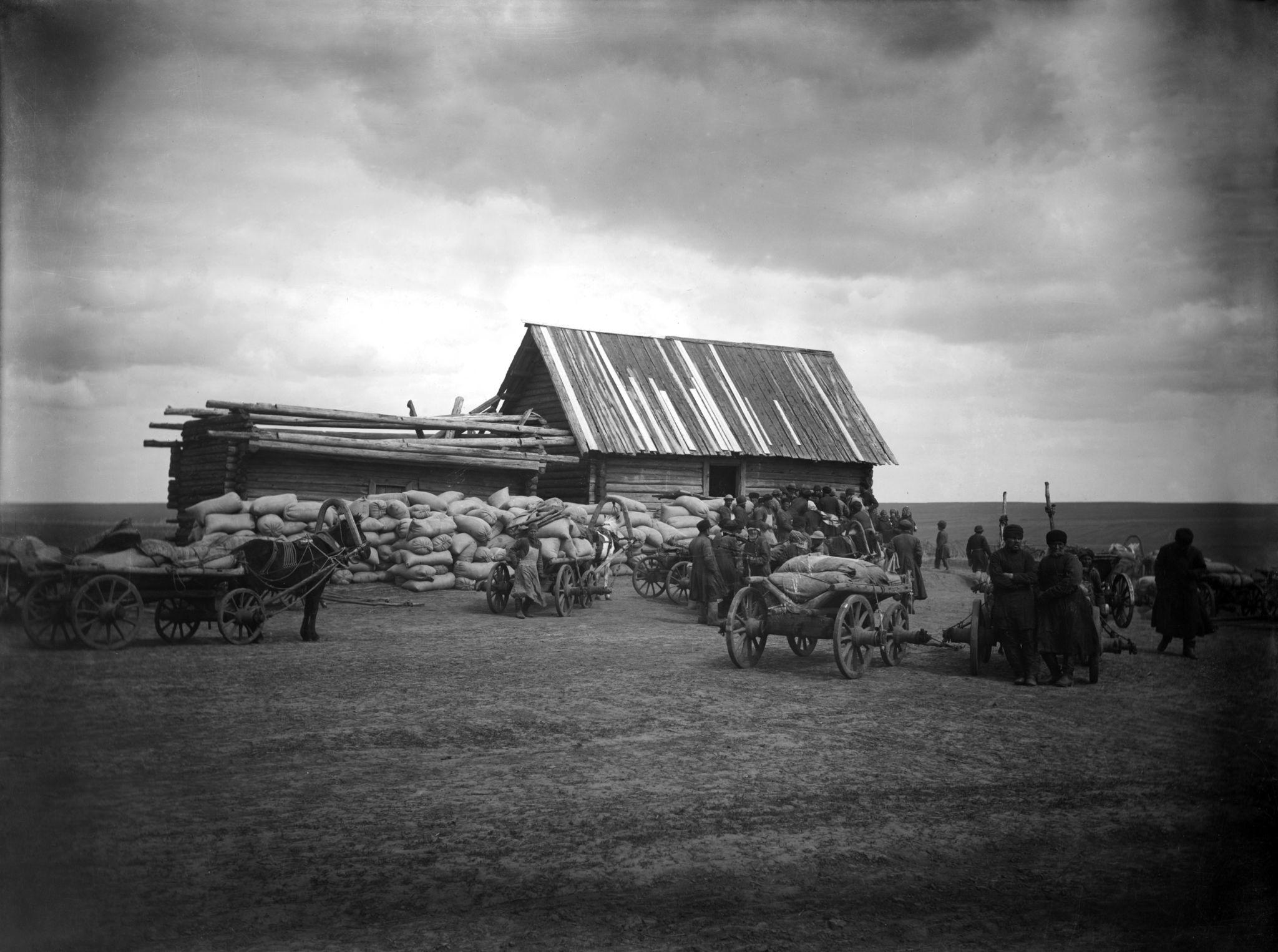 Неурожайный год. Доставка семян в ссуду крестьянам в деревню Урга
