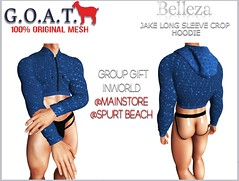 G.O.A.T. BELLEZA JAKE LONG SLEEVE CROP HOODIE