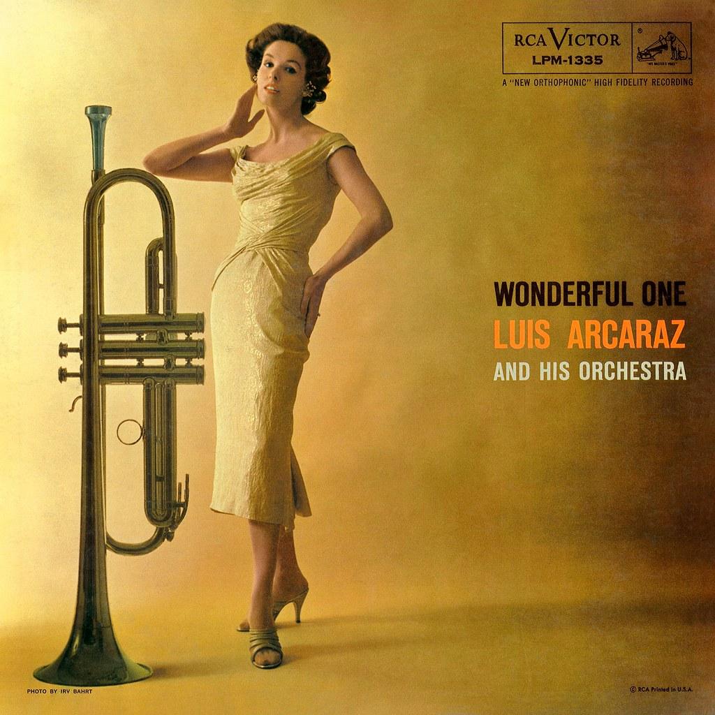 Luis Arcaraz - Wonderful One