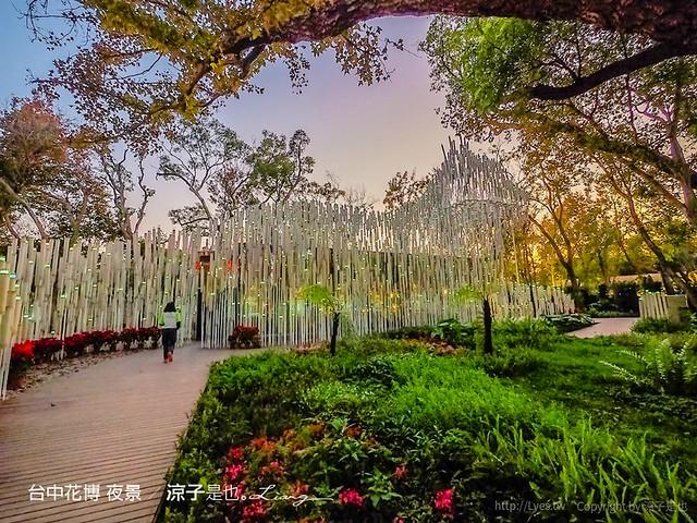 台中花博 夜景 1