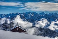 Rigi Scheidegg, Switzerland.