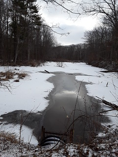 Photo: West Channel by Kaoru Tsubone at Rocky River Reservation, Cleveland Metroparks, 24000 Valley Pkwy, North Olmsted, OH 44070