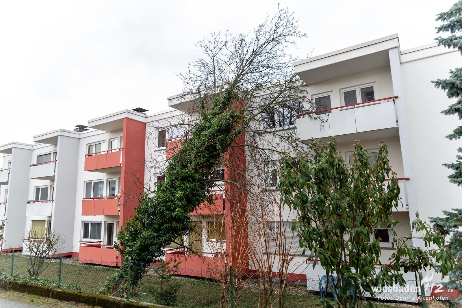 Baum stürzt gegen Hauswand in Wiesbaden 04.03.19