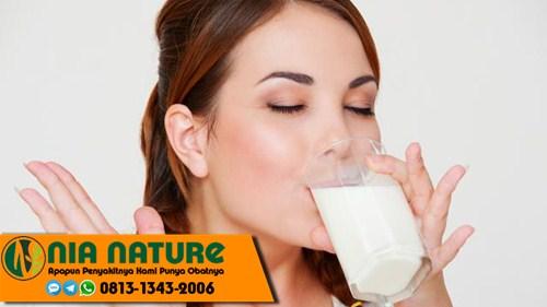Susu Gemuk Ibu Menyusui Di Apotik