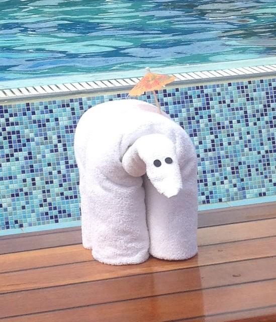 Carnival Paradise Towel Animal elephant