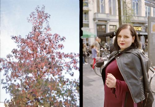 tree vs Claire