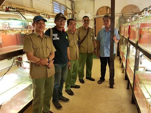 BKSDA Kalsel Dukung Penangkar Arwana PT. Kresnapusaka Tirtalestari (02)
