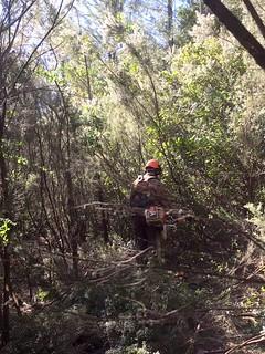 Le sentier RG de la Sainte-Lucie avant les travaux