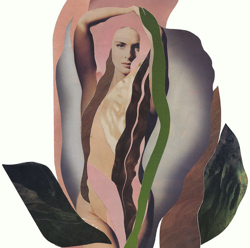 Virgo, the virgin of the horoscope, done in a magazine collage of a white rose with pink edges