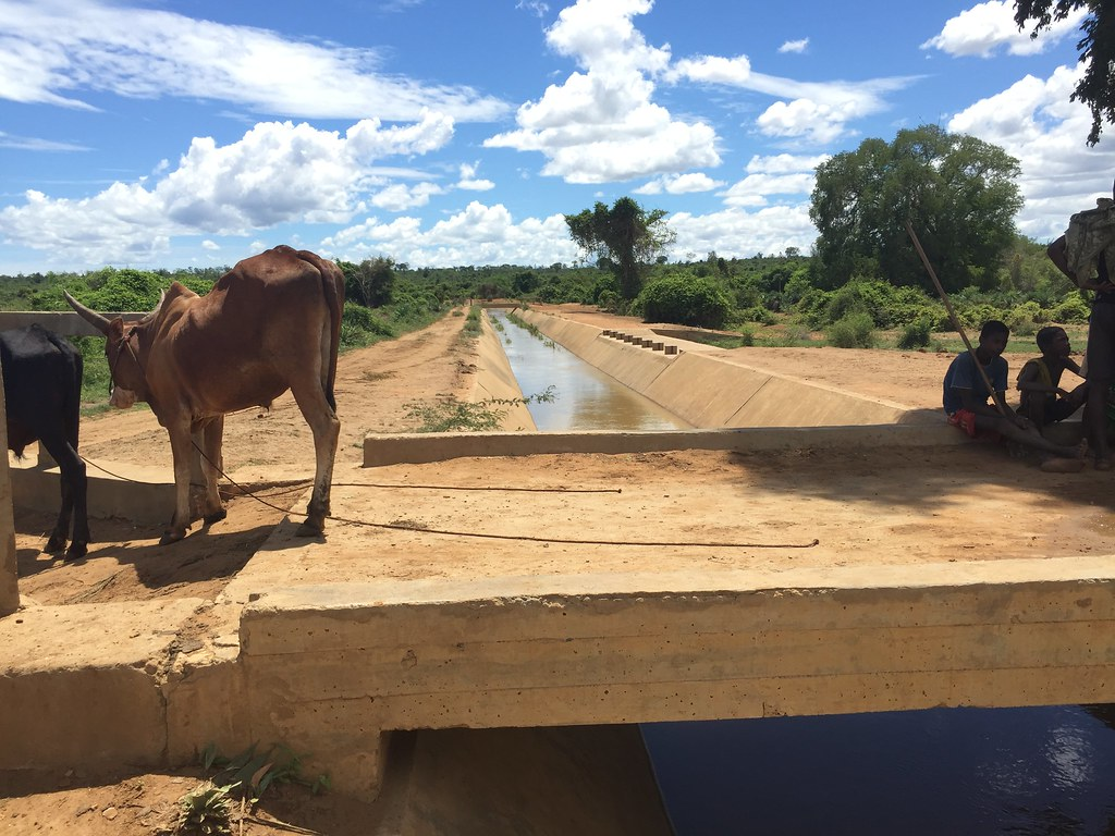 MADAGASCAR : Agriculture, infrastructures & autonomisation des femmes