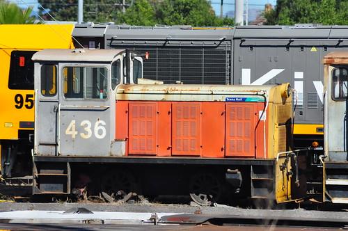 TR 436