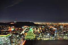 Vue depuis l'observatoire de la Place Ville-Marie la nuit