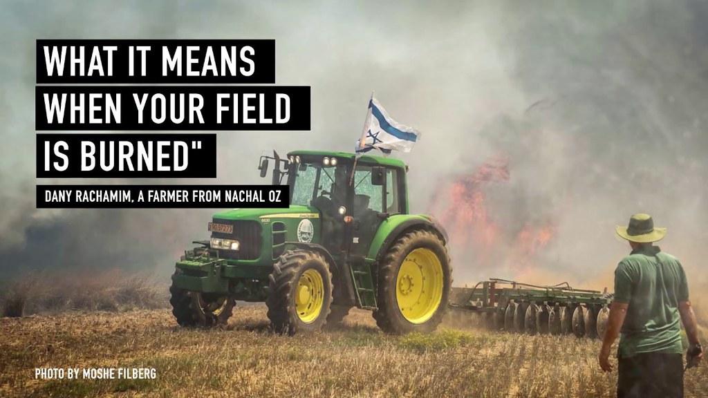 В Израиле сварили пиво из пшеницы, уцелевшей от огня ХАМАС