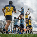 Lineout by Laurent Mayet