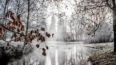 winter morning in Donaueschingen