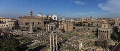 Roma (Panorama Fori)