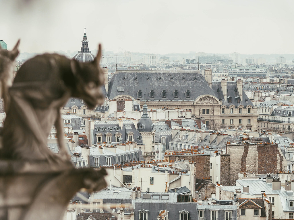 notre-dame balcony view