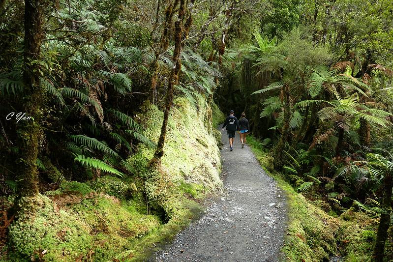 New Zealand - Travelers
