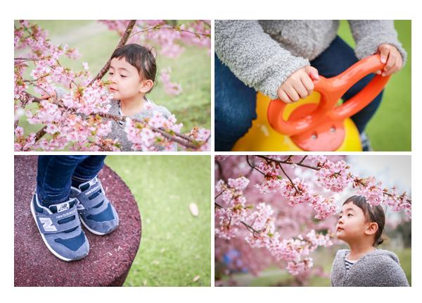 河津桜と女の子 手と足元のアップ写真