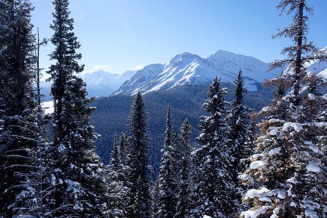 Snowshoeing - Gypsum Ridge - Feb 2019-8