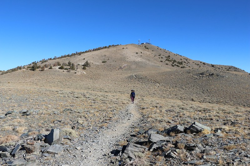 Rogers Peak and radio towers from the Telescope Peak Trail
