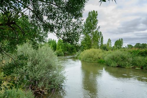 Río Duero en Ituero