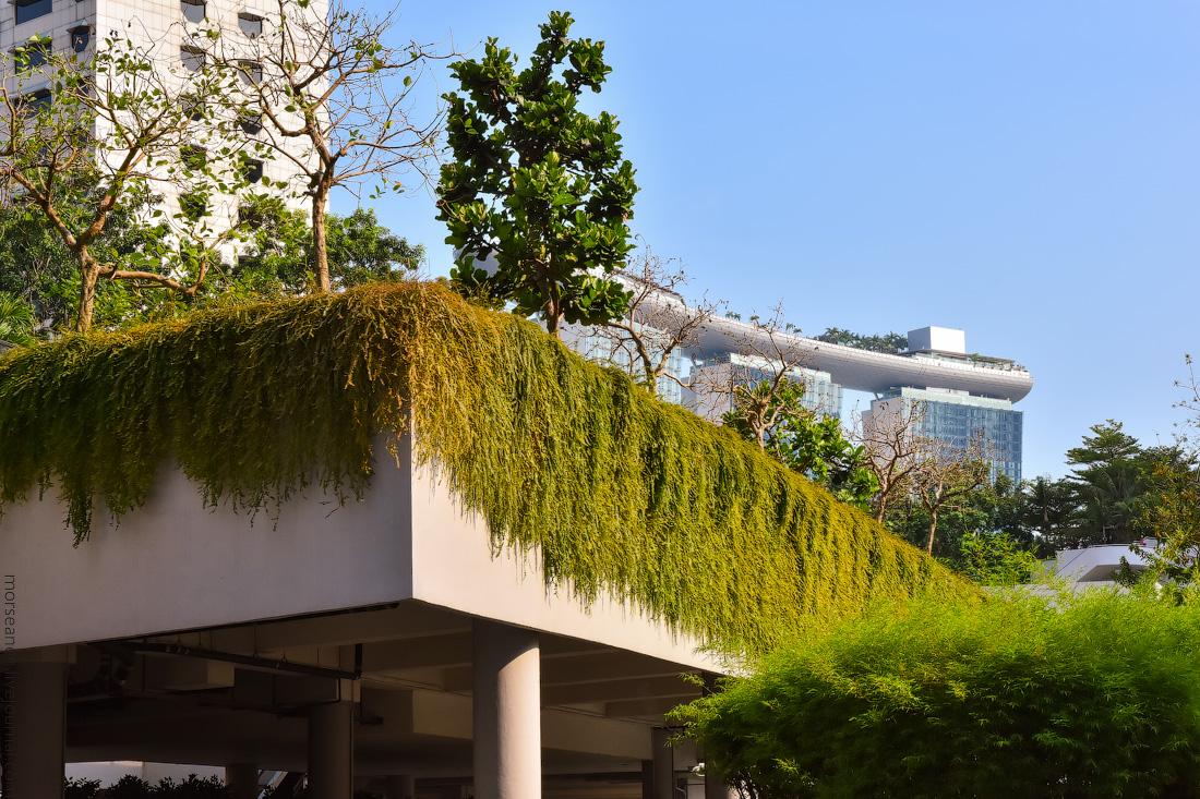 Singapore-details-(31)