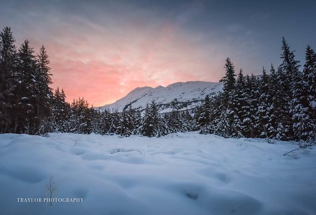 Alaskan Good Morning