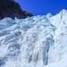 New Zealand - Fox Glacier
