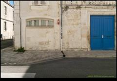 180925-9253-XM1.JPG - Photo of Saint-Ouen-d'Aunis