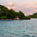 Natures Art Seychelles