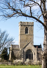 Paull Church and tree