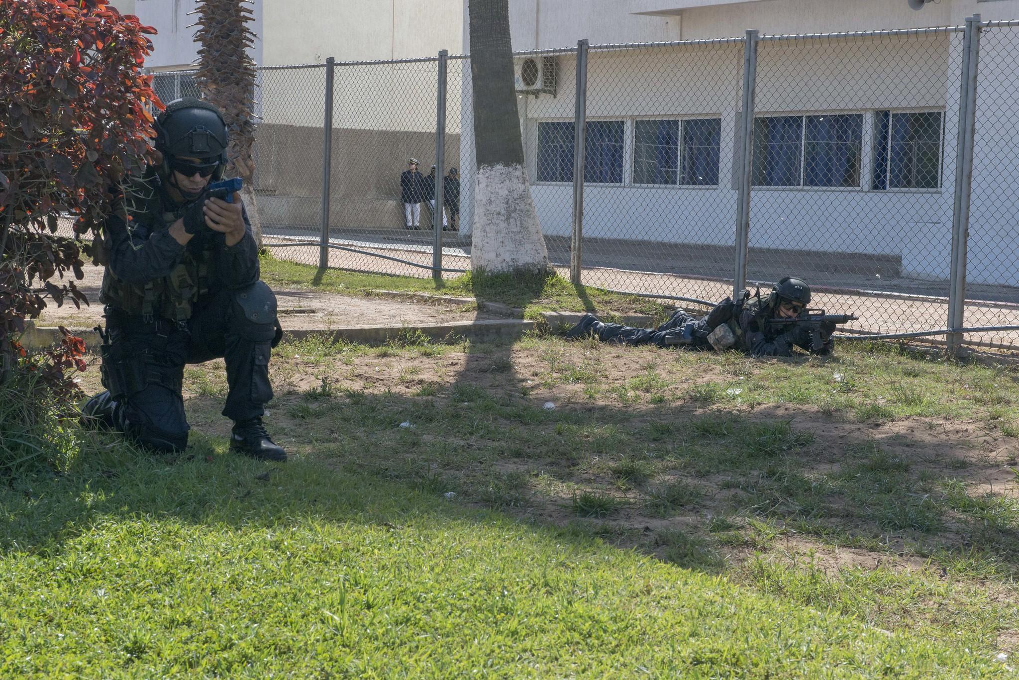 Armée Tunisienne / Tunisian Armed Forces / القوات المسلحة التونسية - Page 15 46579382675_77788d2bd5_k