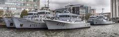 French Navy Lynx Glycine Tiger Jaguar Lynx