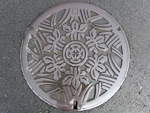 Shuzenji Shizuoka, manhole cover (静岡県修善寺町のマンホール)
