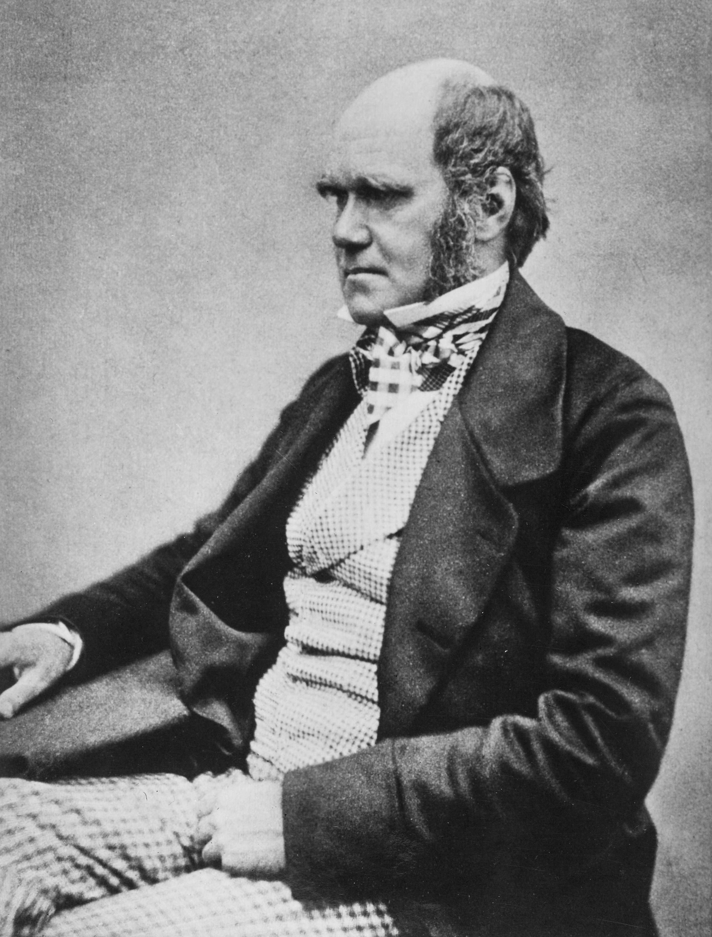 Charles Darwin, photographed by Henry Maull and John Fox, circa 1854 when he was preparing On the Origin of Species for publication. Used as the frontispiece for Francis Darwin's The Life and Letters of Charles Darwin (1887) which has the caption