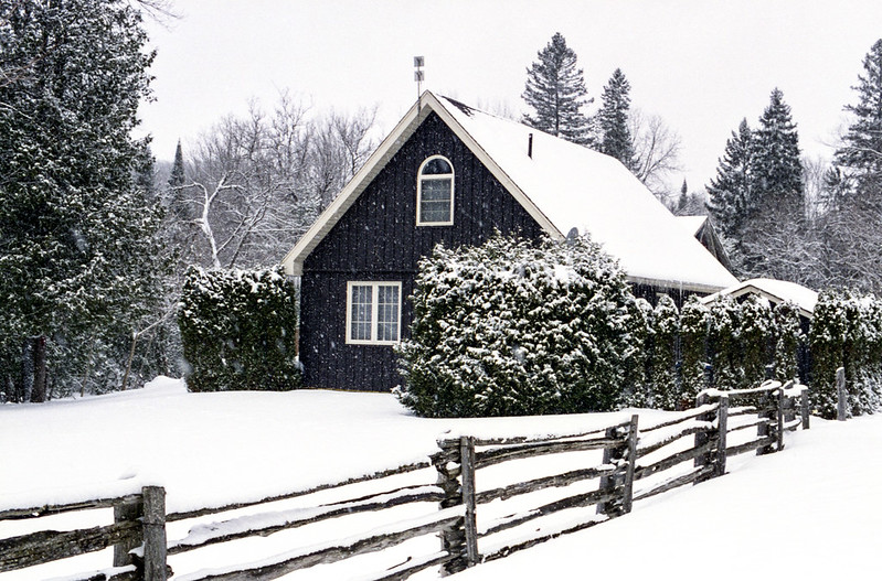 Brimstone Cottage 1
