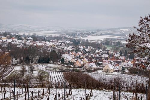 Scharrachbergheim (Scharrachbergheim,France)-101