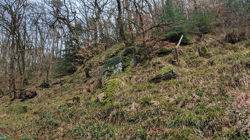 Butterdon Ball Wood Tor
