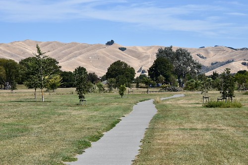 Wither Hills, Blenheim
