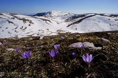 MONTI NURIA e NURIETTA da Rascino (Monti del CIcolano)