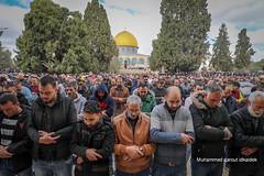 Friday Prayers at Al Aqsa Masjid