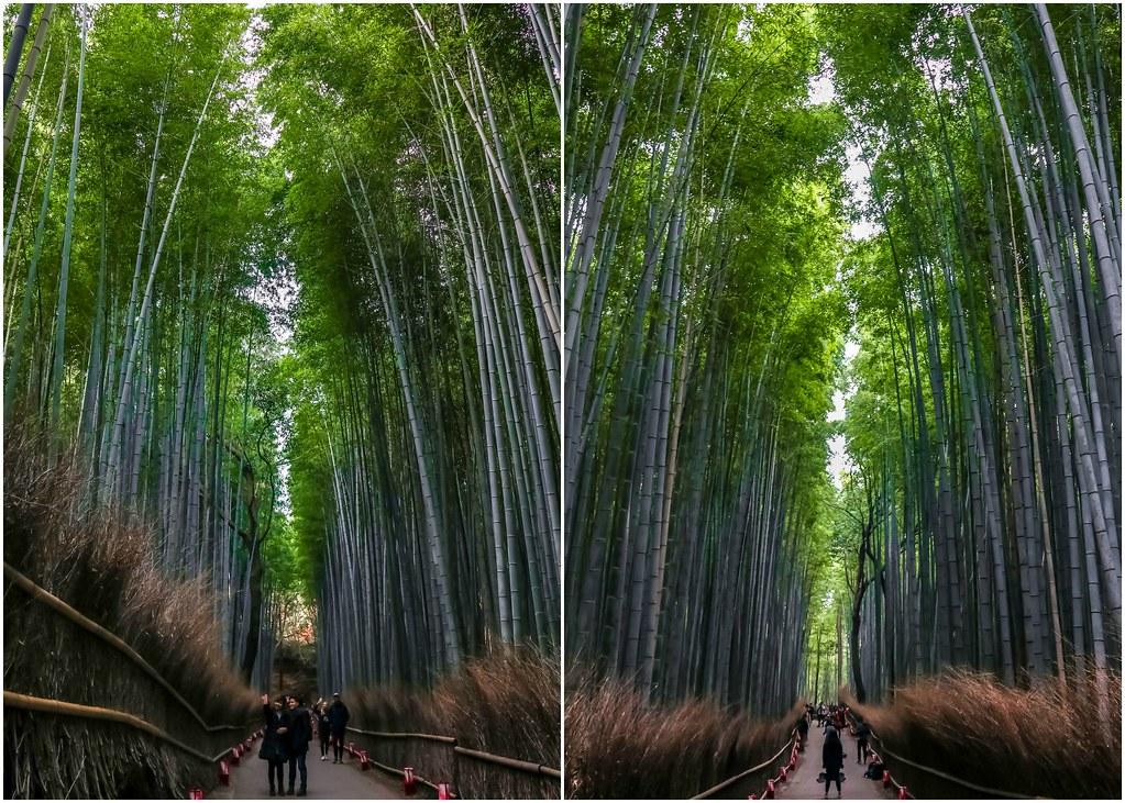 kyoto-arashiyama-alexisjetsets