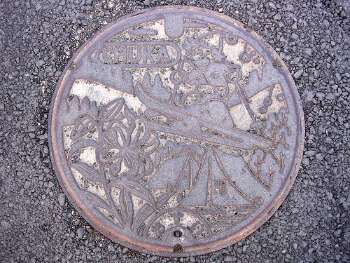 Chuka Okayama, manhole cover (岡山県中和村のマンホール)