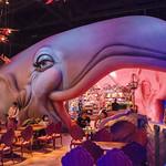 Primary photo for Day 15 - Tokyo Disneyland and Tokyo DisneySea