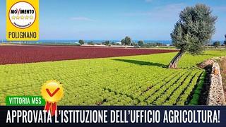 POLIGNANO- ISTITUITO L'UFFICIO AGRICOLTURA E APPROVATE LE MISURE DI CONTRASTO ALLA XYLELLA FASTIDIOSA