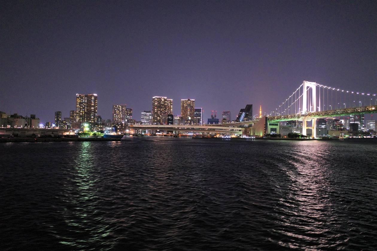 伊豆諸島大型客船からの夜景